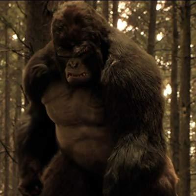 Grodd, Gorilla Grodd