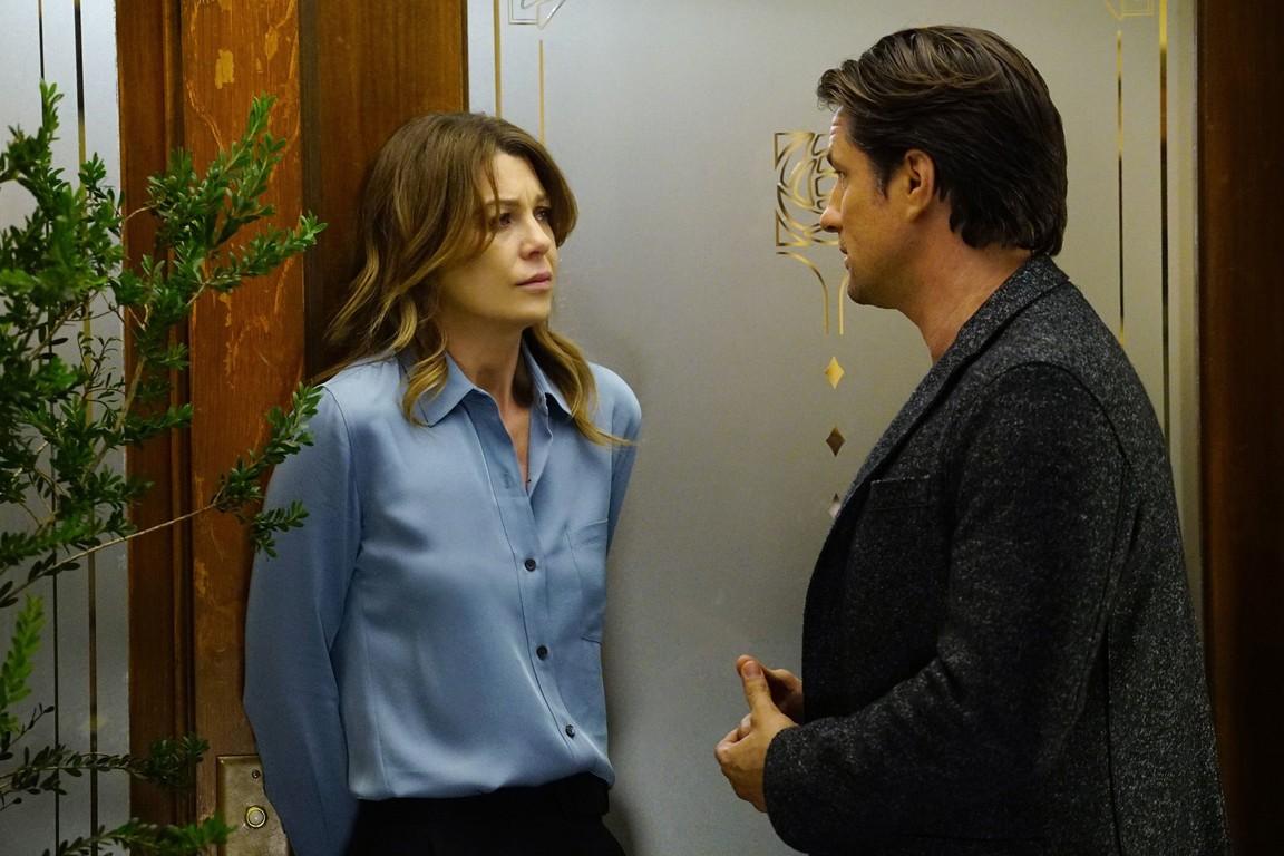 Greys Anatomy - Season 13 Episode 19: What's Inside