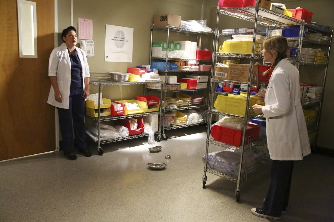 Greys Anatomy - Season 11 Episode 05: Bend and Break