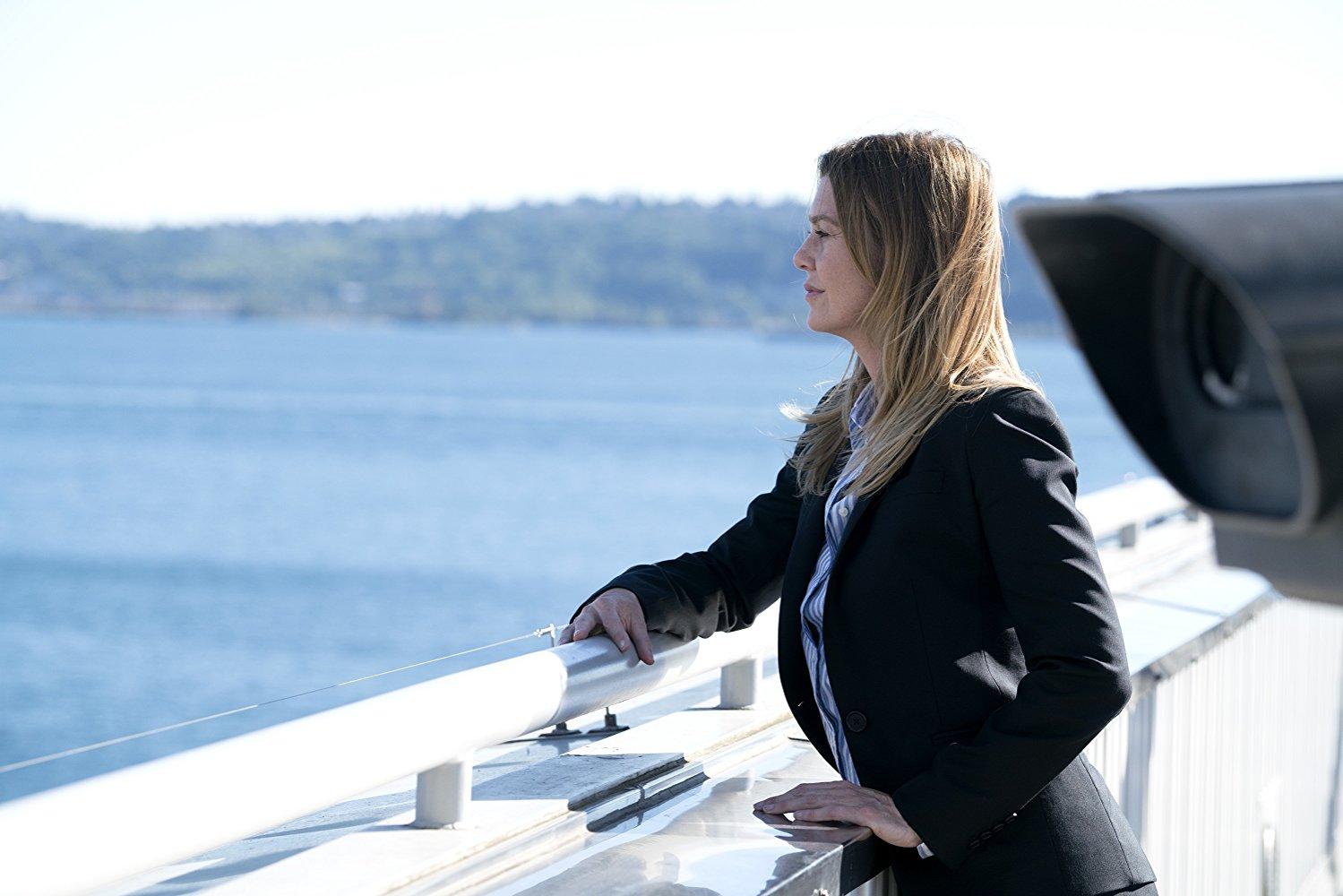 Grey's Anatomy- Season 14