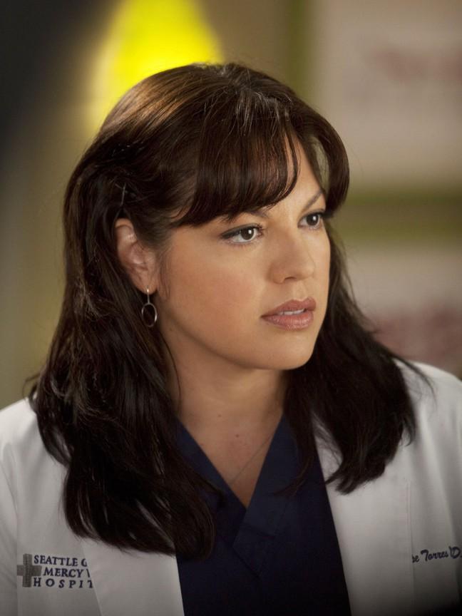 Greys Anatomy - Season 8 Episode 23: Migration