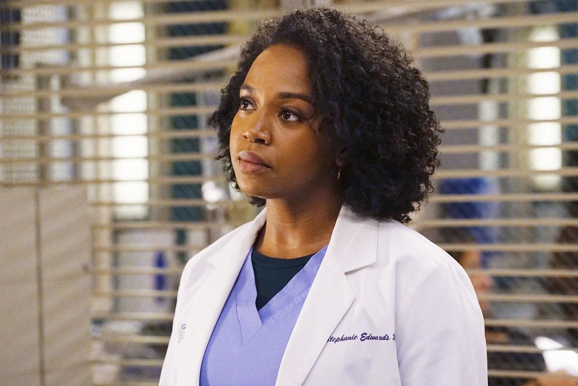 Greys Anatomy - Season 13