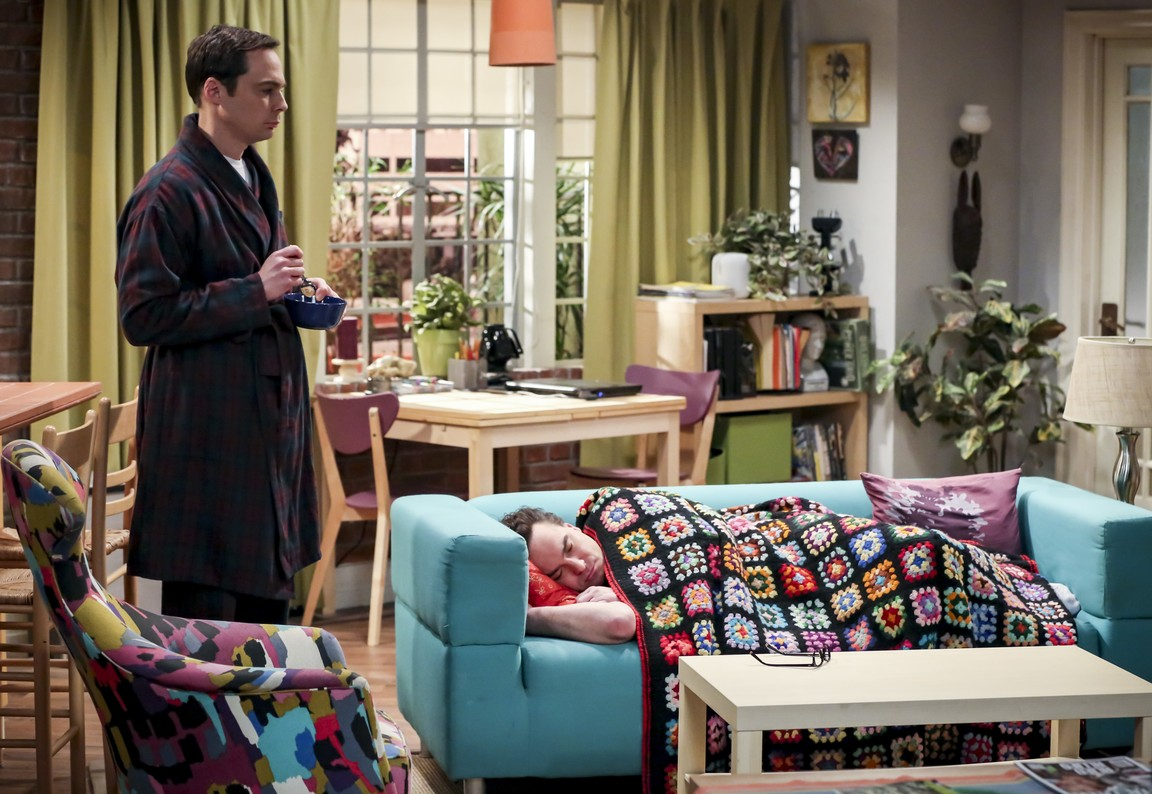 The Big Bang Theory - Season 12 Episode 15: The Donation Oscillation