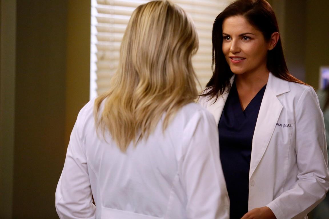 Greys Anatomy - Season 13 Episode 11: Jukebox Hero