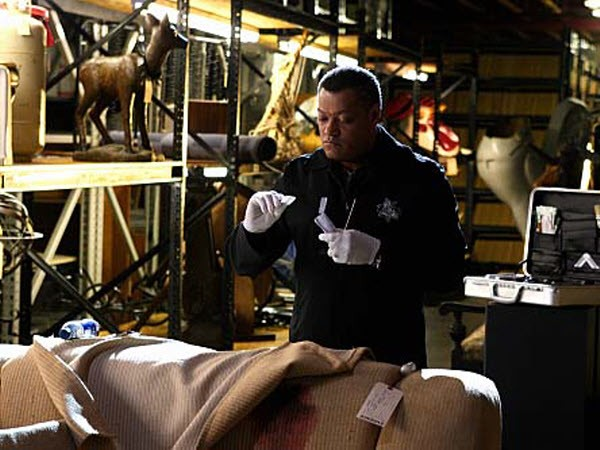 CSI - Season 10 Episode 15: Neverland